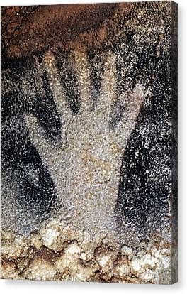 Cave Art: Pech Merle Canvas Print by Granger
