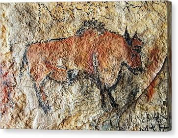 Cave Painting In Prehistoric Style Canvas Print by Michal Boubin