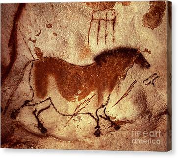 Cave Painting Of A Horse Canvas Print by Unknown