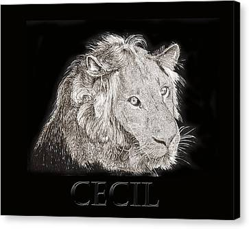 Cecil African Lion R I P  Canvas Print by Jack Pumphrey
