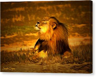Cecil At Sun Canvas Print by Leonardo Digenio