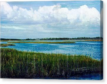 Cedar Key 2 Canvas Print by Bob Senesac