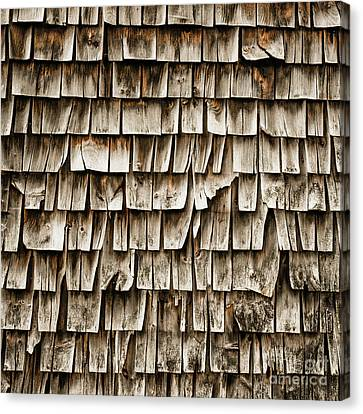 Cabin Wall Canvas Print - Cedar Shingles Pattern by Edward Fielding