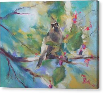 Cedar Wax Wing And Elderberries Canvas Print