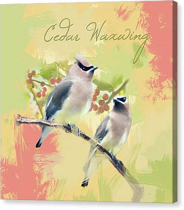 Canvas Print featuring the photograph Cedar Waxwing Watercolor Photo by Heidi Hermes