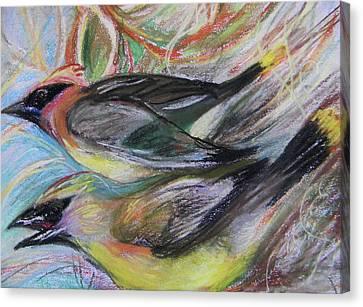 Cedar Waxwings Canvas Print by Emily Michaud