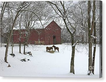 Red Barn In Snow Canvas Print - Cedarock Park In The Snow by Benanne Stiens