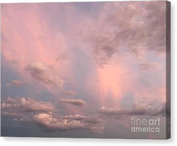 Canvas Print featuring the photograph Celestial Sky by Paula Guttilla