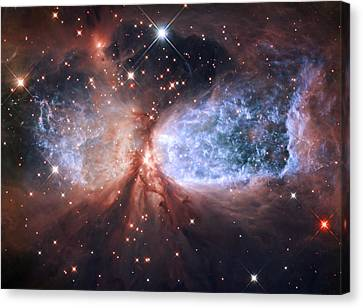 Celestial Snow Angel Canvas Print by Mark Kiver