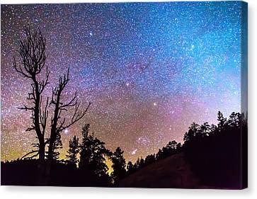 Celestial Universe Canvas Print