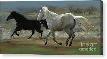 Cello And Greyboy Playing Canvas Print by Dawn Senior-Trask