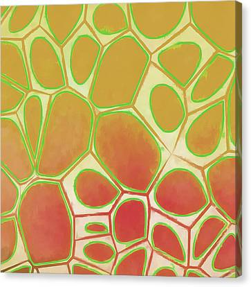 Cells Abstract Five Canvas Print by Edward Fielding