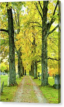 Canvas Print featuring the photograph Cemetery Lane by Greg Fortier