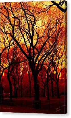 Cental Park In Red Canvas Print by Diane C Nicholson