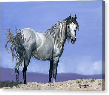 Centauro Sky Canvas Print by Melody Perez