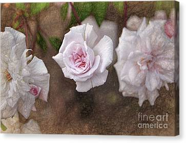 Center Of Hope Canvas Print by Gina Savage