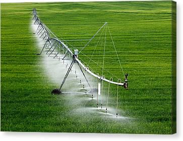 Center Pivot Irrigation Canvas Print by Todd Klassy