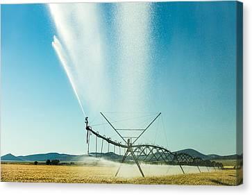 Center Pivot Irrigation Unit Spraying Water Canvas Print by Todd Klassy