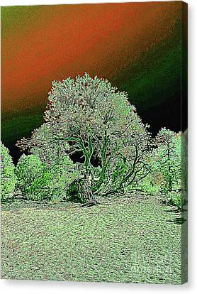 Canvas Print featuring the digital art Center Tree With Character And Neighbors by Merton Allen