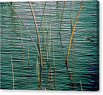 Centered Canvas Print by Susanne Van Hulst