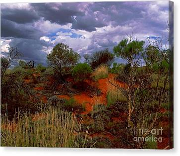Canvas Print featuring the photograph Central Australia I by Louise Fahy