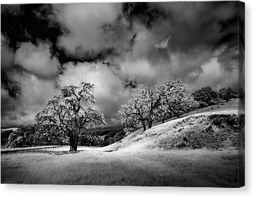 Central California Ranch Canvas Print