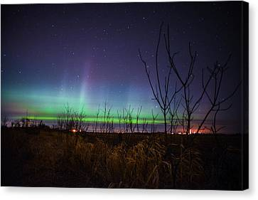 Benton Canvas Print - Central Minnesota Aurora by Alex Blondeau