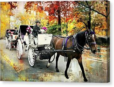 Central Park Carriage Canvas Print by Diana Angstadt