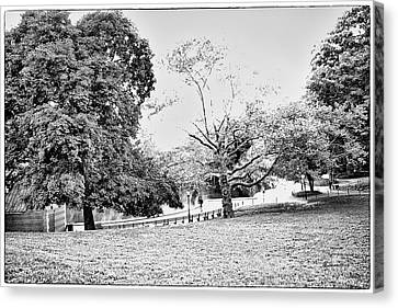 Canvas Print featuring the photograph Central Park In Black And White by Madeline Ellis