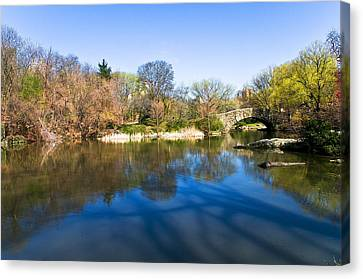 Central Park In New York City Canvas Print by Svetlana Sewell