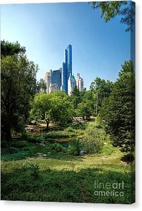 Central Park Ny Canvas Print by Daniel Heine