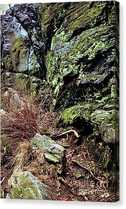 Canvas Print featuring the photograph Central Park Rock Formation by Sandy Moulder