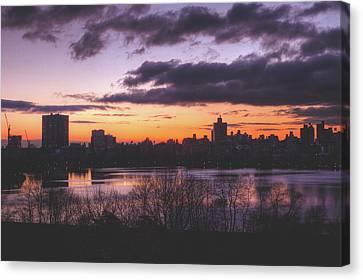 Central Park Sunrise Canvas Print by Ariane Moshayedi