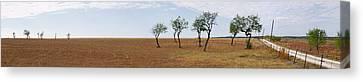 Central Texas Landscape Canvas Print