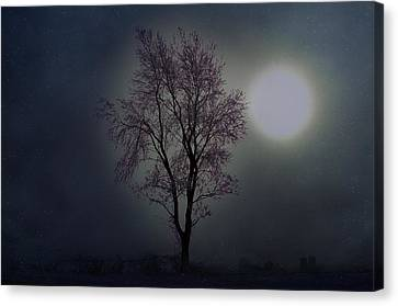 Cerulean Sunrise On Ice Canvas Print by The Stone Age