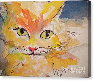 Cfo  Chief Furry Officer Of Jilly Willy Art Canvas Print