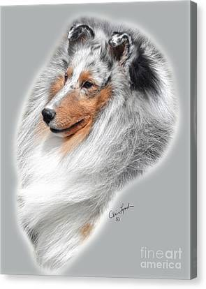 Ch Arenray's Diamonheir Canvas Print by Chris Lynch