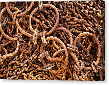 Industrial Background Canvas Print - Chains And Rings And Rust by Olivier Le Queinec