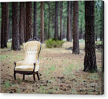 Canvas Print - Chair In The Forest by Terry Garvin