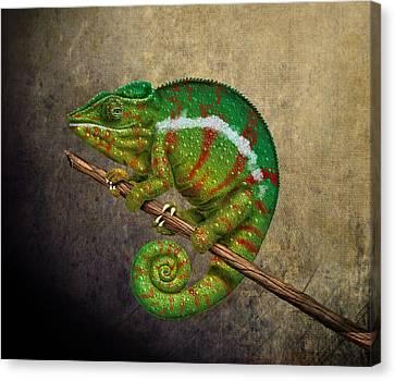 Chameleon Canvas Print by Kathie Miller