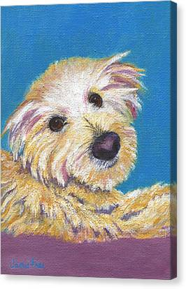 Canvas Print featuring the painting Chance by Jamie Frier