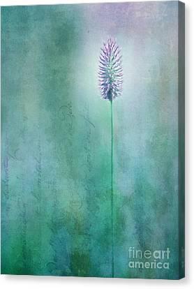 Blossom Canvas Print - Chandelle by Priska Wettstein