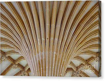 Canvas Print featuring the photograph Chapter House Ceiling, Wells Cathedral. by Colin Rayner