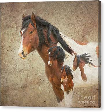 Charger As Art Canvas Print by Nicole Markmann Nelson