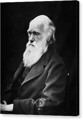 Charles Darwin Canvas Print by War Is Hell Store