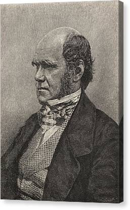 Charles Darwin,1809  1882 Aged 45 Canvas Print by Vintage Design Pics