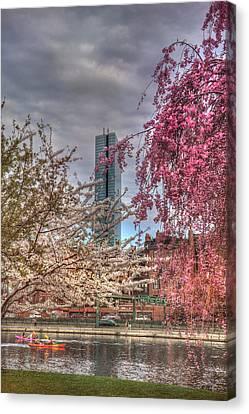 Spring Scenes Canvas Print - Charles River Esplanade - Boston by Joann Vitali