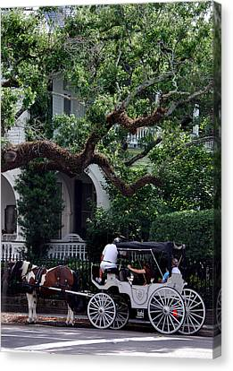 Charleston Buggy Ride Canvas Print by Skip Willits