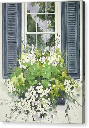 Charleston Windowbox Canvas Print