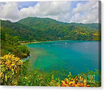 Charlotteville View  Canvas Print